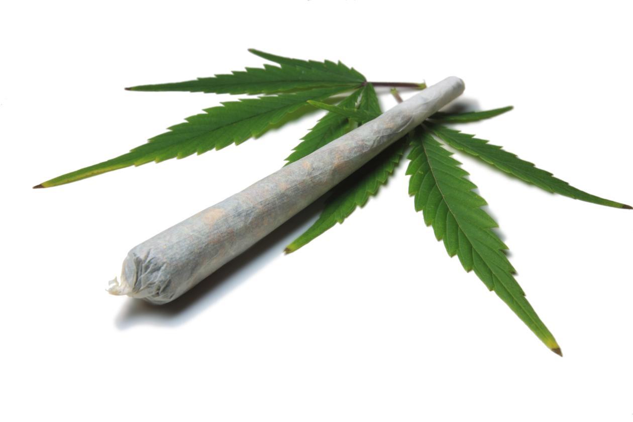 Название: Los-10-mitos-del-Cannabis-sativa-4.jpg Просмотров: 92  Размер: 42.2 Кб