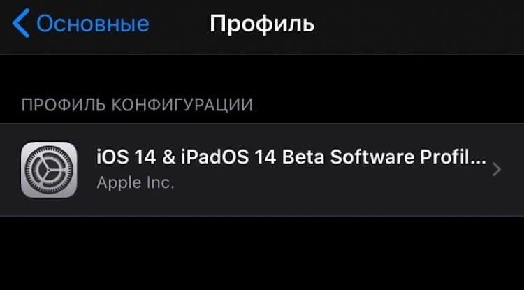 Название: ios14_profile1.jpeg Просмотров: 90  Размер: 17.7 Кб